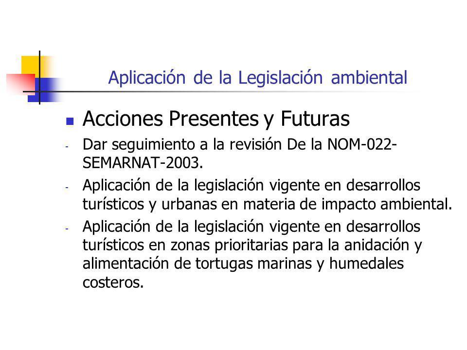 Aplicación de la Legislación ambiental Acciones Presentes y Futuras - Dar seguimiento a la revisión De la NOM-022- SEMARNAT-2003.