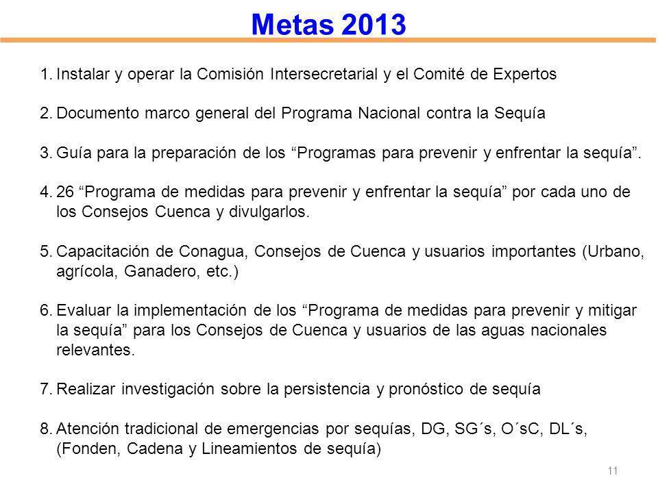 Metas 2013 1.Instalar y operar la Comisión Intersecretarial y el Comité de Expertos 2.Documento marco general del Programa Nacional contra la Sequía 3