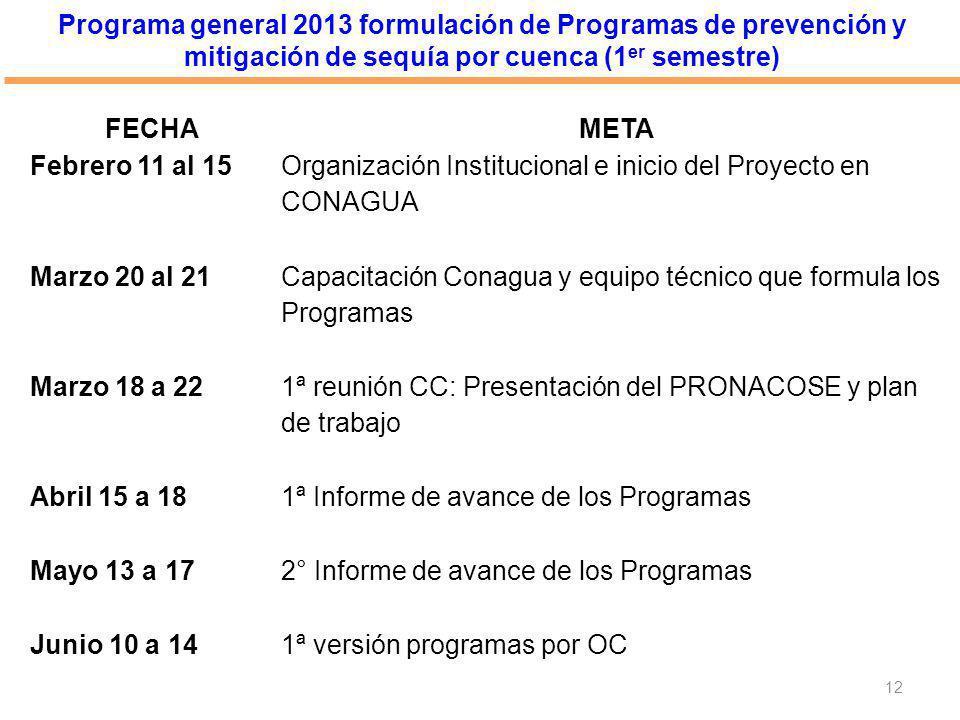 Programa general 2013 formulación de Programas de prevención y mitigación de sequía por cuenca (1 er semestre) 12 FECHAMETA Febrero 11 al 15 Organizac