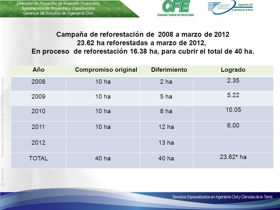 AñoCompromiso originalDiferimientoLogrado 200810 ha2 ha 2.35 200910 ha5 ha 5.22 201010 ha8 ha 10.05 201110 ha12 ha 6.00 201213 ha TOTAL40 ha 23.62* ha Campaña de reforestación de 2008 a marzo de 2012 23.62 ha reforestadas a marzo de 2012, En proceso de reforestación 16.38 ha, para cubrir el total de 40 ha.