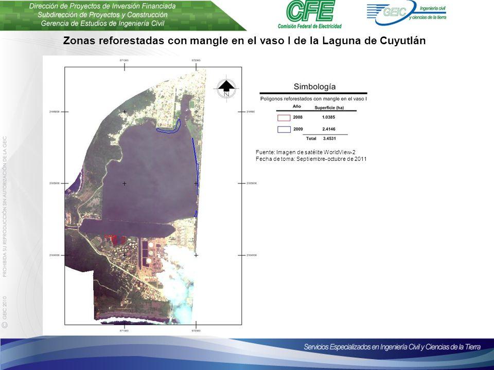 Plantilla para presentaciones Octubre de 2010 Zonas reforestadas con mangle en el vaso I de la Laguna de Cuyutlán Fuente: Imagen de satélite WorldView-2 Fecha de toma: Septiembre-octubre de 2011
