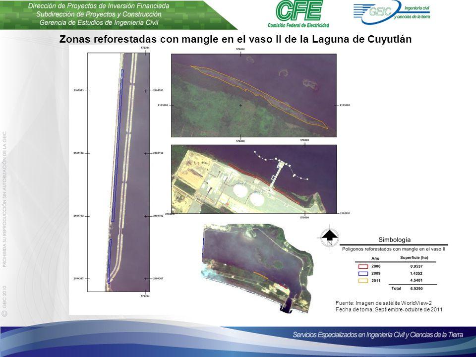 Plantilla para presentaciones Octubre de 2010 Zonas reforestadas con mangle en el vaso II de la Laguna de Cuyutlán Fuente: Imagen de satélite WorldView-2 Fecha de toma: Septiembre-octubre de 2011