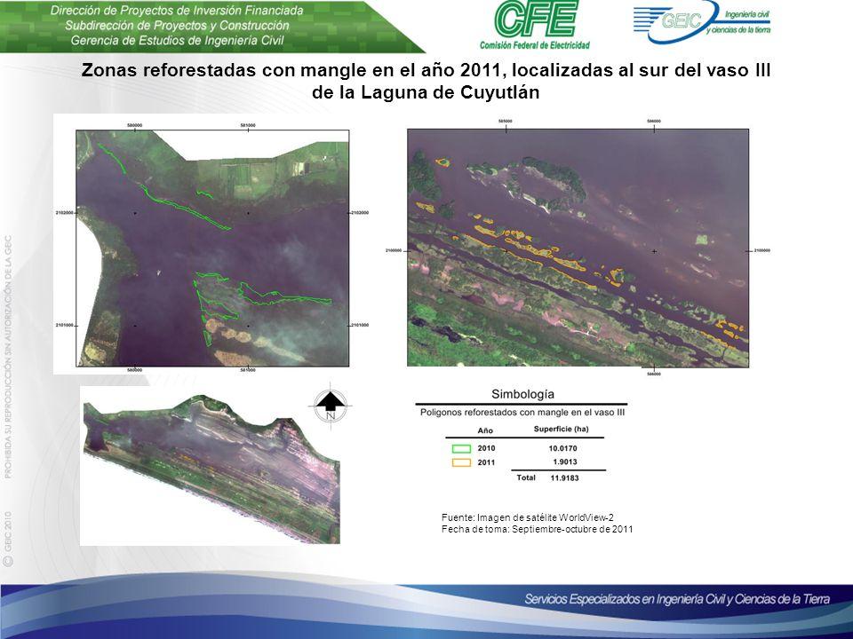 Plantilla para presentaciones Octubre de 2010 Zonas reforestadas con mangle en el año 2011, localizadas al sur del vaso III de la Laguna de Cuyutlán Fuente: Imagen de satélite WorldView-2 Fecha de toma: Septiembre-octubre de 2011