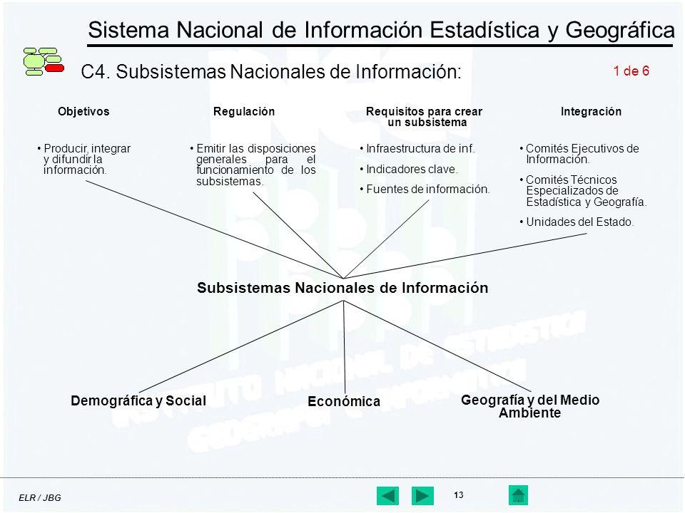 ELR / JBG 13 Sistema Nacional de Información Estadística y Geográfica C4. Subsistemas Nacionales de Información: Subsistemas Nacionales de Información