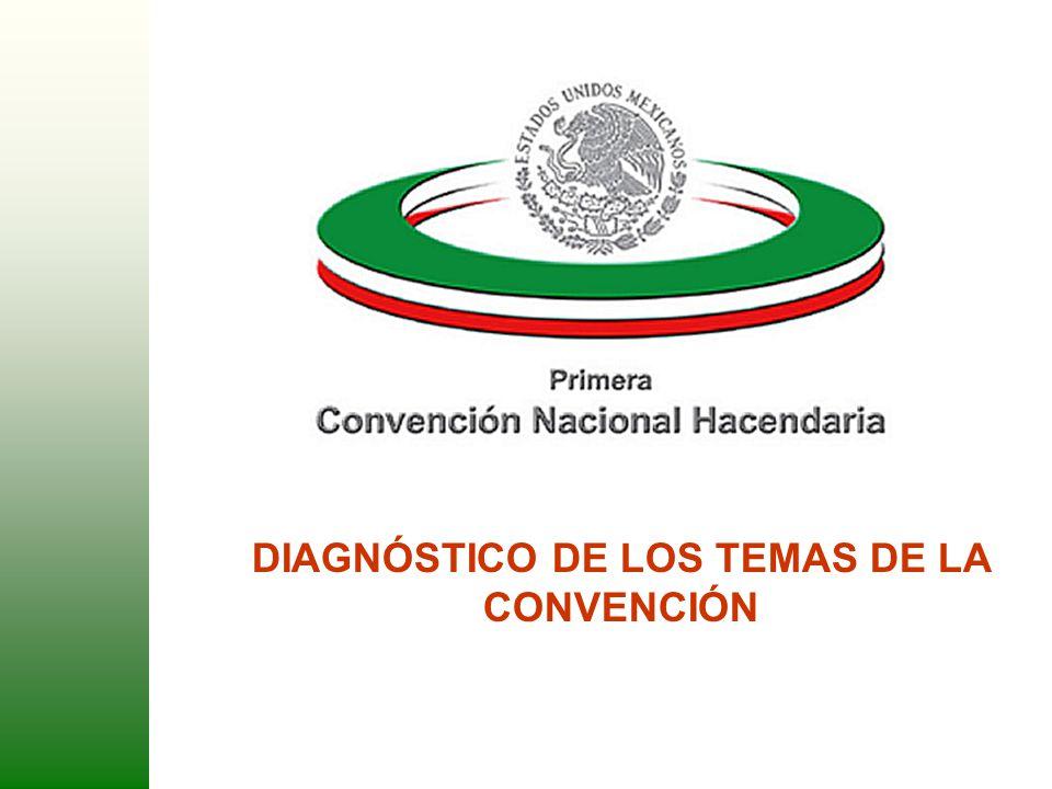 1 DIAGNÓSTICO DE LOS TEMAS DE LA CONVENCIÓN