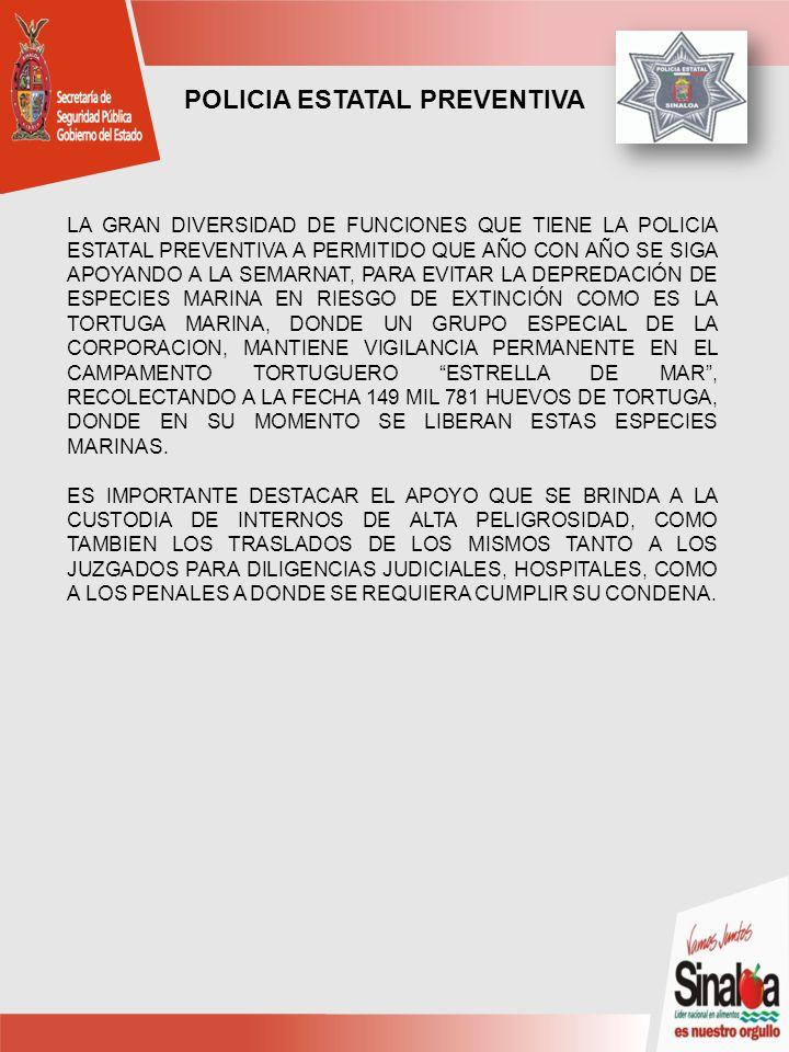 LA GRAN DIVERSIDAD DE FUNCIONES QUE TIENE LA POLICIA ESTATAL PREVENTIVA A PERMITIDO QUE AÑO CON AÑO SE SIGA APOYANDO A LA SEMARNAT, PARA EVITAR LA DEPREDACIÓN DE ESPECIES MARINA EN RIESGO DE EXTINCIÓN COMO ES LA TORTUGA MARINA, DONDE UN GRUPO ESPECIAL DE LA CORPORACION, MANTIENE VIGILANCIA PERMANENTE EN EL CAMPAMENTO TORTUGUERO ESTRELLA DE MAR, RECOLECTANDO A LA FECHA 149 MIL 781 HUEVOS DE TORTUGA, DONDE EN SU MOMENTO SE LIBERAN ESTAS ESPECIES MARINAS.