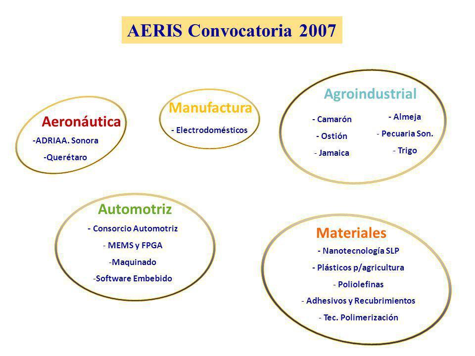 AERIS Convocatoria 2007 Aeronáutica -ADRIAA.