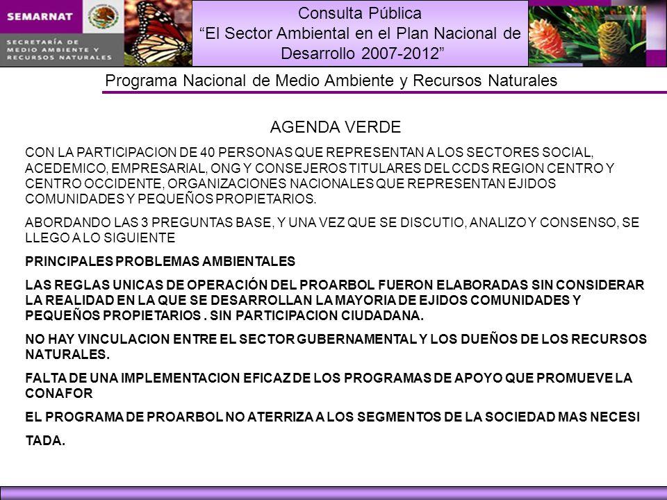 Consulta Pública El Sector Ambiental en el Plan Nacional de Desarrollo 2007-2012 Programa Nacional de Medio Ambiente y Recursos Naturales AGENDA VERDE CON LA PARTICIPACION DE 40 PERSONAS QUE REPRESENTAN A LOS SECTORES SOCIAL, ACEDEMICO, EMPRESARIAL, ONG Y CONSEJEROS TITULARES DEL CCDS REGION CENTRO Y CENTRO OCCIDENTE, ORGANIZACIONES NACIONALES QUE REPRESENTAN EJIDOS COMUNIDADES Y PEQUEÑOS PROPIETARIOS.
