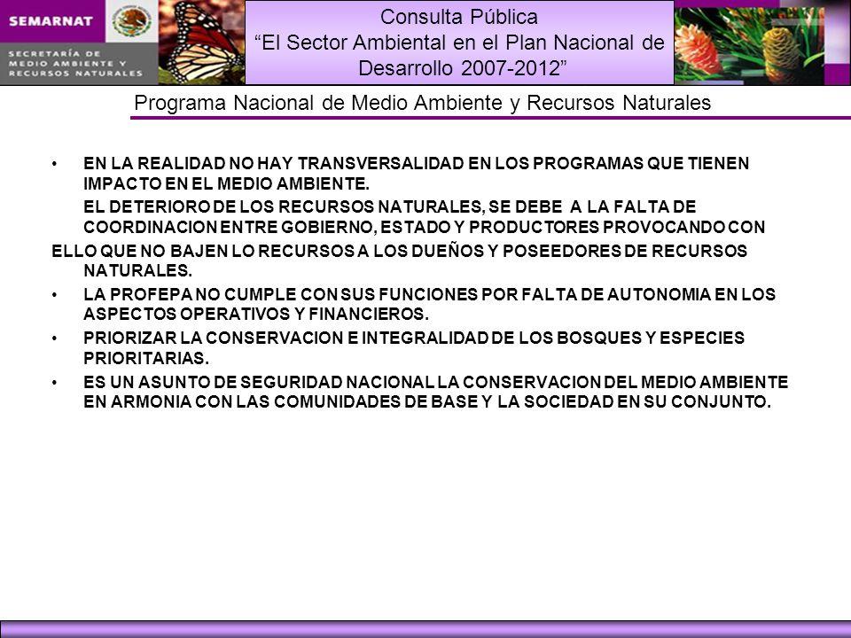 Consulta Pública El Sector Ambiental en el Plan Nacional de Desarrollo 2007-2012 Programa Nacional de Medio Ambiente y Recursos Naturales EN LA REALID
