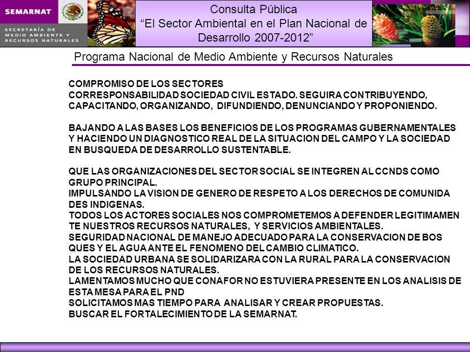 Consulta Pública El Sector Ambiental en el Plan Nacional de Desarrollo 2007-2012 Programa Nacional de Medio Ambiente y Recursos Naturales COMPROMISO DE LOS SECTORES CORRESPONSABILIDAD SOCIEDAD CIVIL ESTADO.