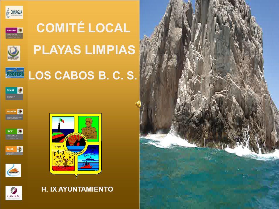 LOS CABOS B. C. S. H. IX AYUNTAMIENTO COMITÉ LOCAL PLAYAS LIMPIAS
