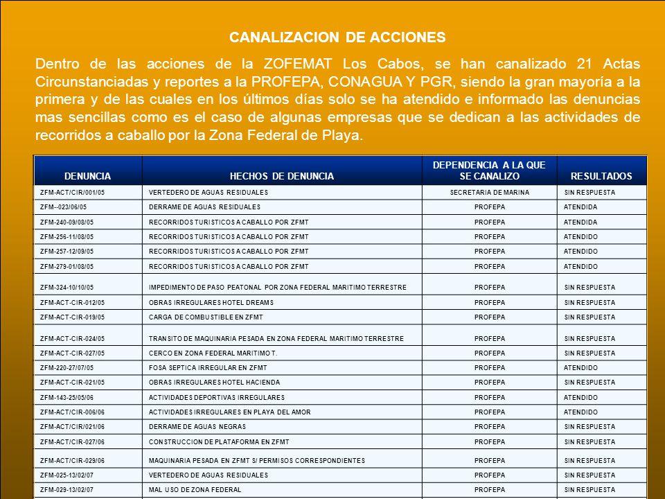 CANALIZACION DE ACCIONES Dentro de las acciones de la ZOFEMAT Los Cabos, se han canalizado 21 Actas Circunstanciadas y reportes a la PROFEPA, CONAGUA