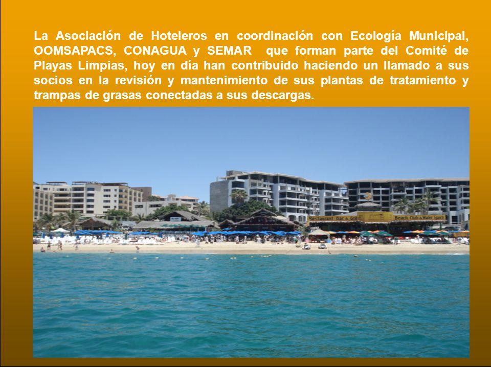 La Asociación de Hoteleros en coordinación con Ecología Municipal, OOMSAPACS, CONAGUA y SEMAR que forman parte del Comité de Playas Limpias, hoy en dí