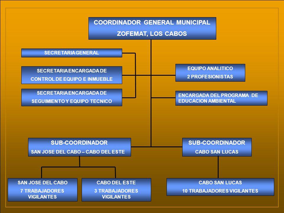 COORDINADOR GENERAL MUNICIPAL ZOFEMAT, LOS CABOS SECRETARIA GENERAL SECRETARIA ENCARGADA DE CONTROL DE EQUIPO E INMUEBLE SECRETARIA ENCARGADA DE SEGUI