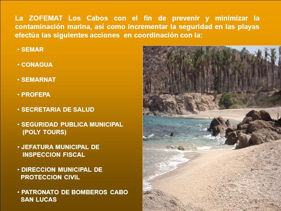 Se realizan operaciones de Vigilancia y Limpieza de las playas, en los 175 km de litoral que tiene el Municipio de Los Cabos.