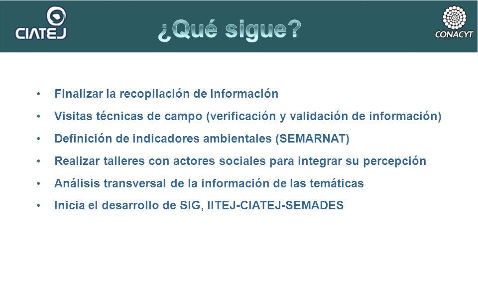 Finalizar la recopilación de información Visitas técnicas de campo (verificación y validación de información) Definición de indicadores ambientales (S