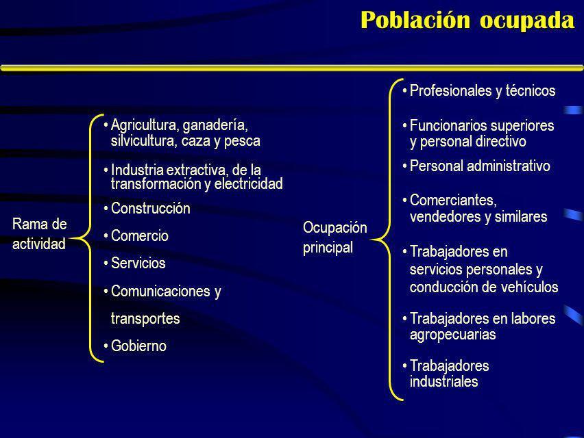 Características del empleo