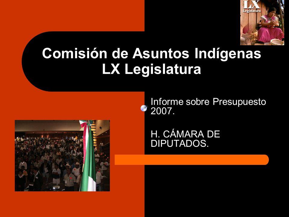 Comisión de Asuntos Indígenas LX Legislatura Informe sobre Presupuesto 2007.