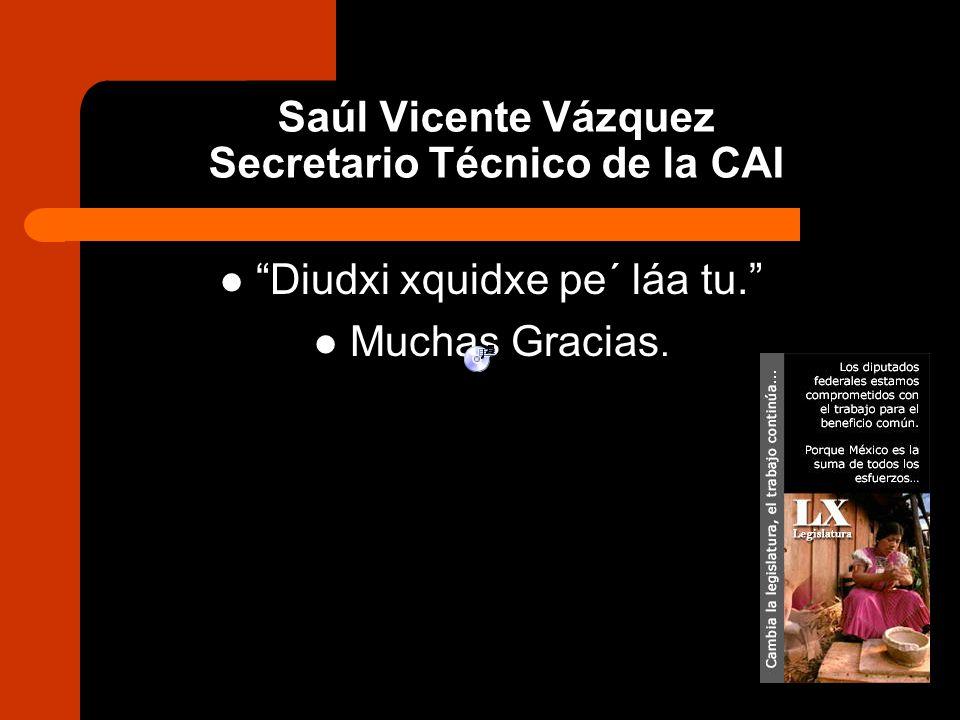 Saúl Vicente Vázquez Secretario Técnico de la CAI Diudxi xquidxe pe´ láa tu. Muchas Gracias.