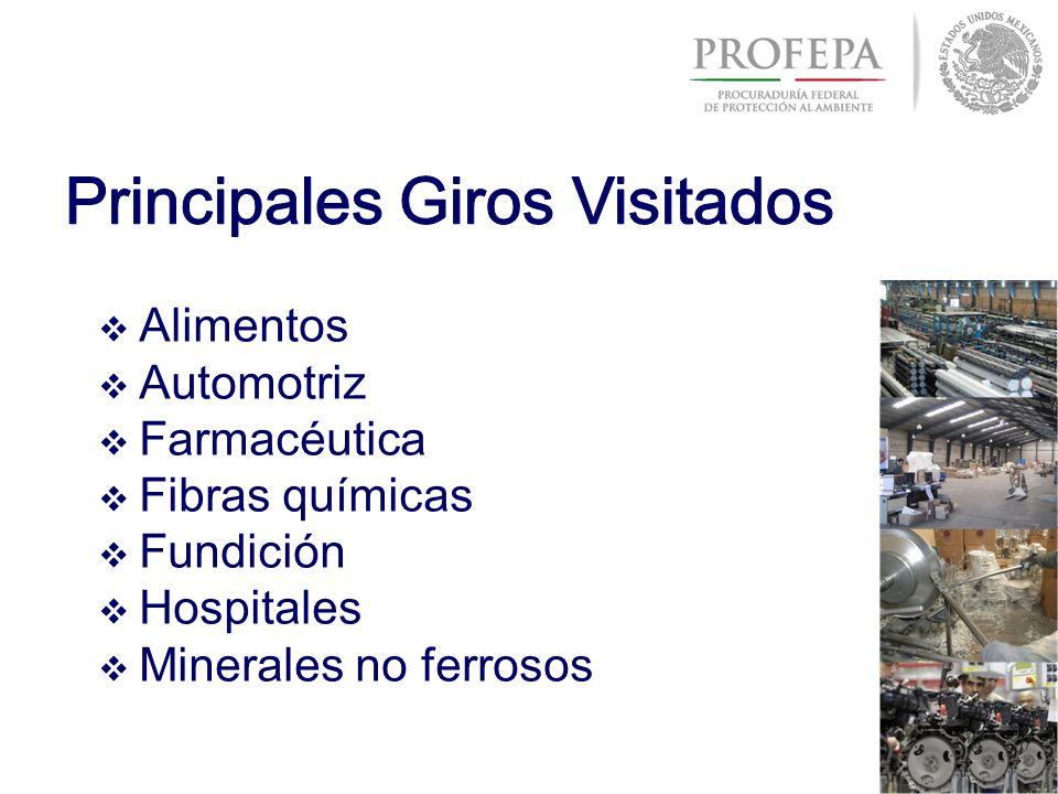 Alimentos Automotriz Farmacéutica Fibras químicas Fundición Hospitales Minerales no ferrosos