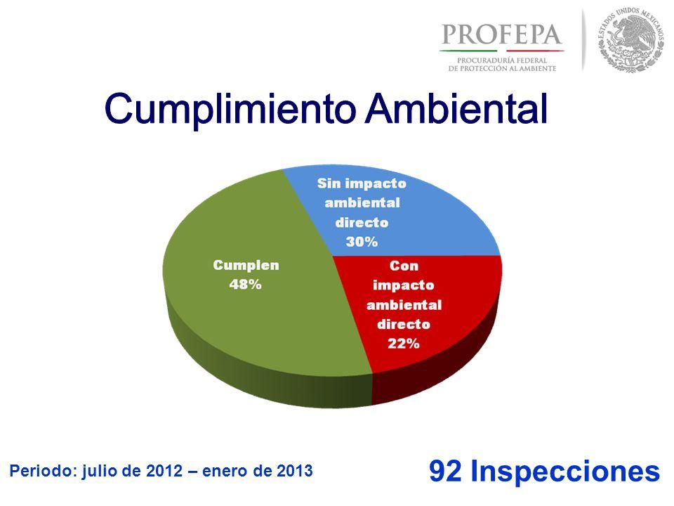 Periodo: julio de 2012 – enero de 2013 92 Inspecciones