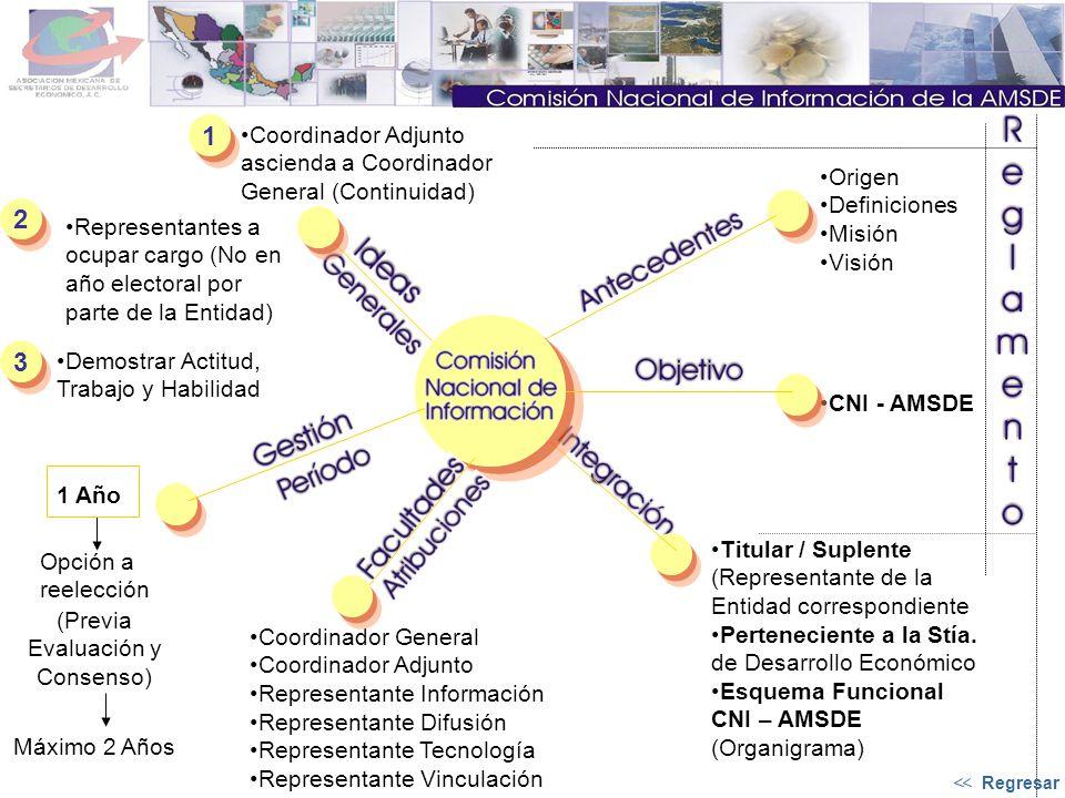 Origen Definiciones Misión Visión CNI - AMSDE Titular / Suplente (Representante de la Entidad correspondiente Perteneciente a la Stía.