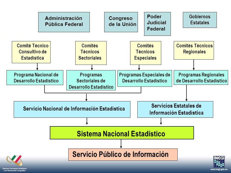 Un conjunto de datos producidos que organizados bajo una estructura conceptual predeterminada, permiten mostrar la situación e interdependencia de los fenómenos económicos, demográficos y sociales.