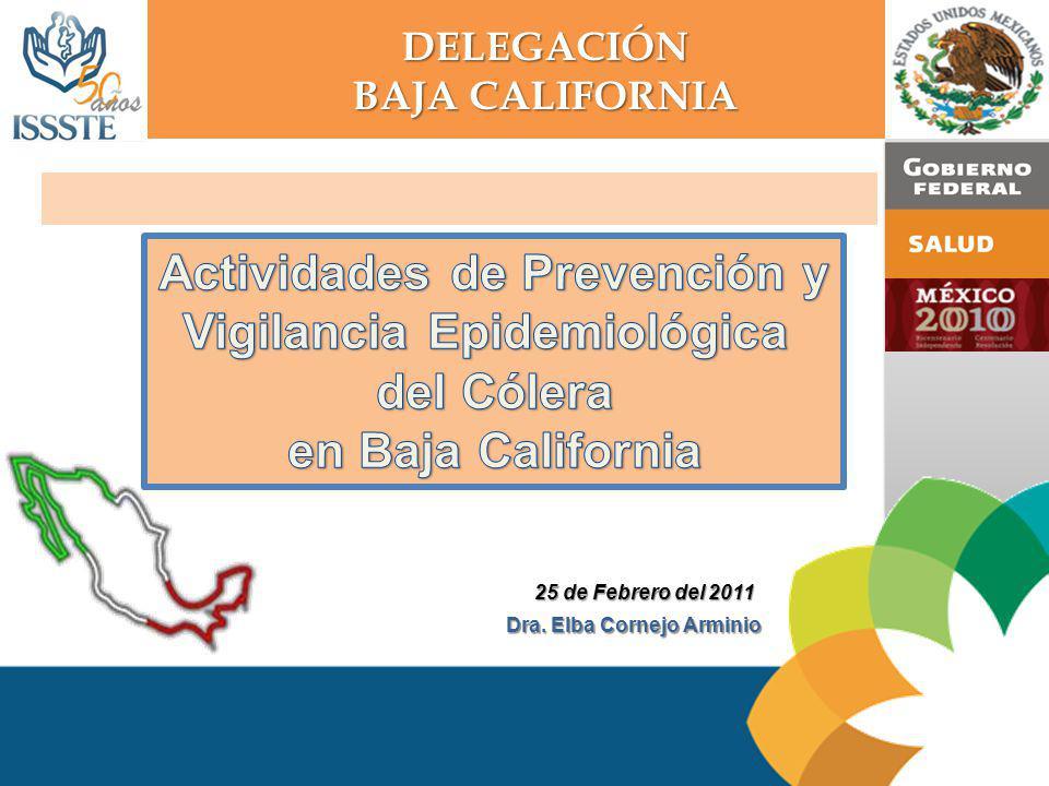 DELEGACIÓN BAJA CALIFORNIA SITUACIÓN EPIDEMIOLÓGICA DE LA EDA Zona epidémica 2010 FUENTE: Informe Semanal de Casos Nuevos