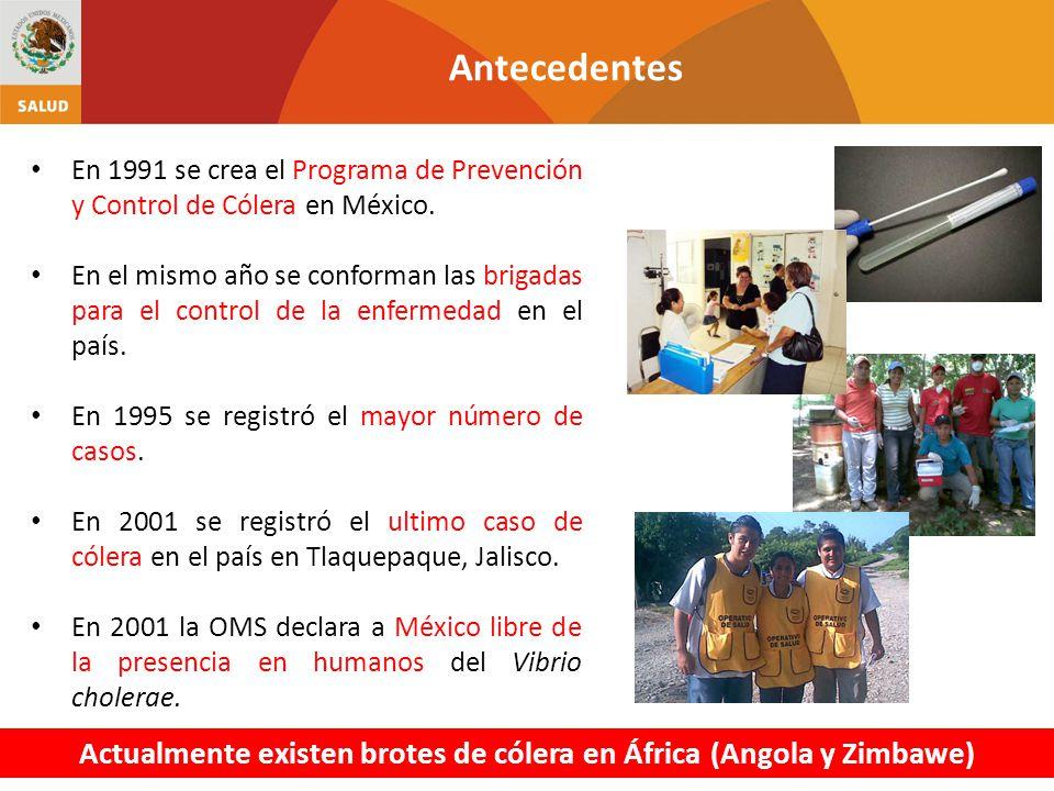Antecedentes En 1991 se crea el Programa de Prevención y Control de Cólera en México. En el mismo año se conforman las brigadas para el control de la