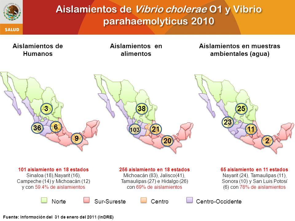 Aislamientos de Vibrio cholerae O1 y Vibrio parahaemolyticus 2010 Fuente: Información del 31 de enero del 2011 (InDRE) NorteCentroSur-SuresteCentro-Occidente Aislamientos de Humanos Aislamientos en alimentos Aislamientos en muestras ambientales (agua) 36 101 aislamiento en 18 estados Sinaloa (18),Nayarit (16), Campeche (14) y Michoacán (12) y con 59.4% de aislamientos 3 9 6 38 20 21 103 256 aislamiento en 18 estados Michoacán (83), Jalisco(41), Tamaulipas (27) e Hidalgo (26) con 69% de aislamientos 25 23 2 11 65 aislamiento en 11 estados Nayarit (24), Tamaulipas (11), Sonora (10) y San Luis Potosí (6) con 78% de aislamientos