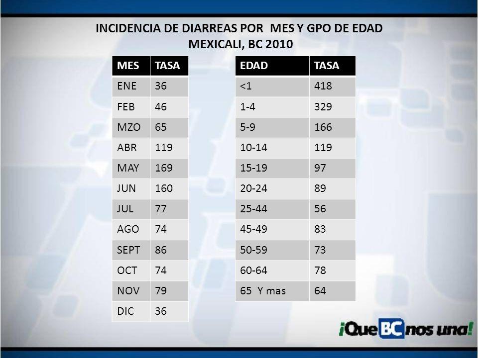 INCIDENCIA DE DIARREAS POR MES Y GPO DE EDAD MEXICALI, BC 2010 MESTASA ENE36 FEB46 MZO65 ABR119 MAY169 JUN160 JUL77 AGO74 SEPT86 OCT74 NOV79 DIC36 EDA