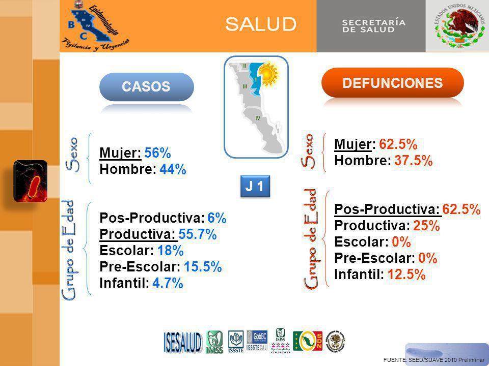 FUENTE: SEED/SUAVE 2010 Preliminar Mujer: 56% Hombre: 44% Pos-Productiva: 6% Productiva: 55.7% Escolar: 18% Pre-Escolar: 15.5% Infantil: 4.7% Sexo Grupo de Edad Mujer: 62.5% Hombre: 37.5% Pos-Productiva: 62.5% Productiva: 25% Escolar: 0% Pre-Escolar: 0% Infantil: 12.5% Sexo Grupo de Edad J 1