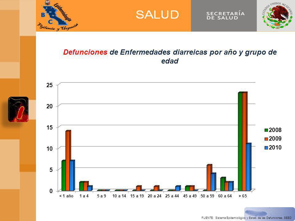 Defunciones de Enfermedades diarreicas por año y grupo de edad FUENTE: Sistema Epidemiológico y Estad.