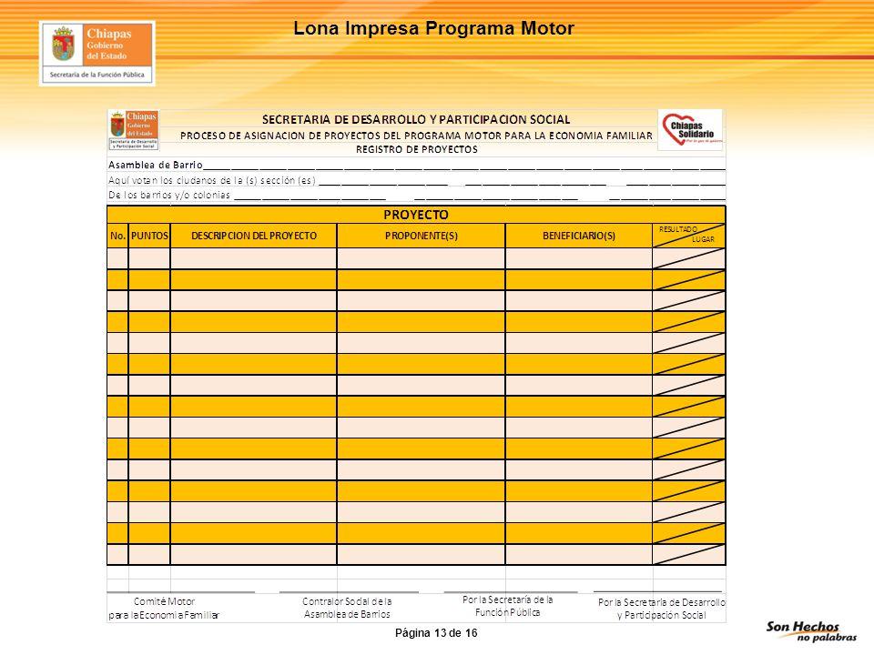 Lona Impresa Programa Motor Página 13 de 16