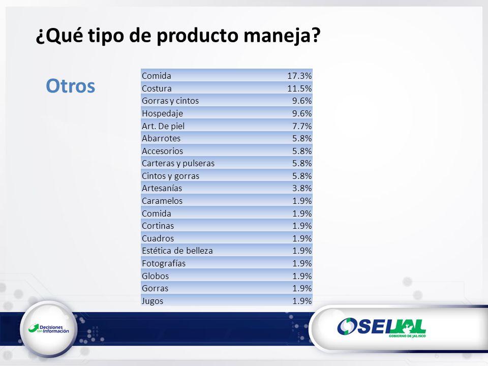 Otros Comida17.3% Costura11.5% Gorras y cintos9.6% Hospedaje9.6% Art.
