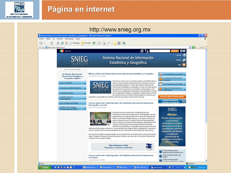Página en internet http://www.snieg.org.mx
