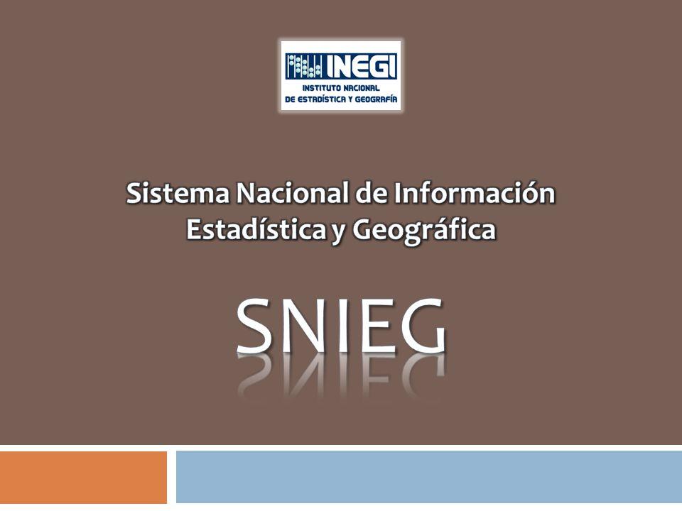 El Sistema Nacional de Información Estadística y Geográfica Es el conjunto de Unidades organizadas a través de Subsistemas, articuladas en la Red Nacional de Información, con el objetivo de producir y difundir información de interés nacional.