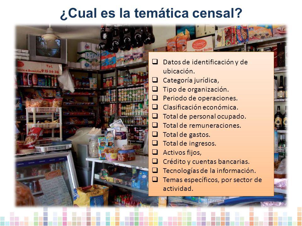 ¿Cual es la temática censal.Datos de identificación y de ubicación.