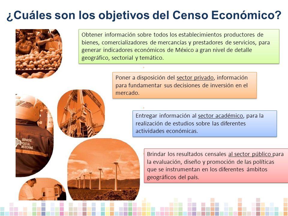 ¿Cuáles son los objetivos del Censo Económico.