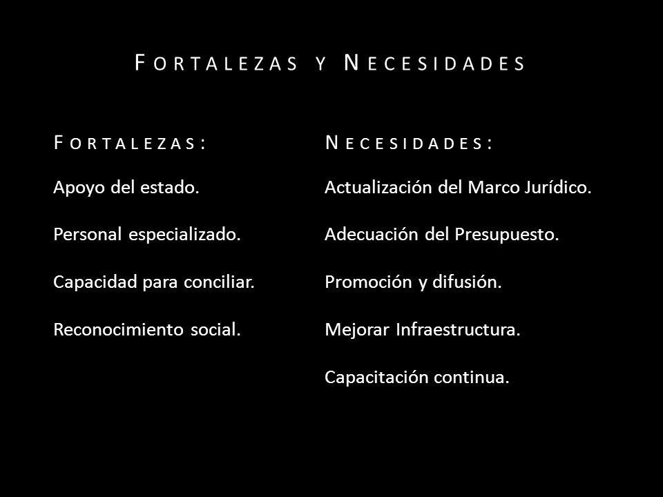 F ORTALEZAS Y N ECESIDADES F ORTALEZAS :N ECESIDADES : Apoyo del estado.