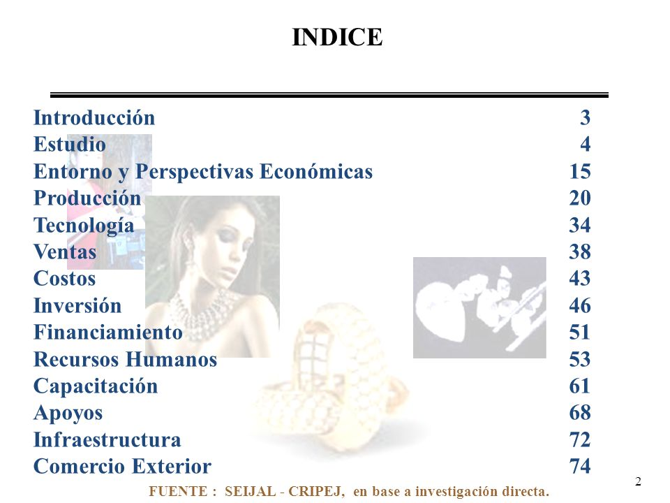 INDICE Introducción 3 Estudio 4 Entorno y Perspectivas Económicas15 Producción20 Tecnología34 Ventas38 Costos43 Inversión46 Financiamiento51 Recursos