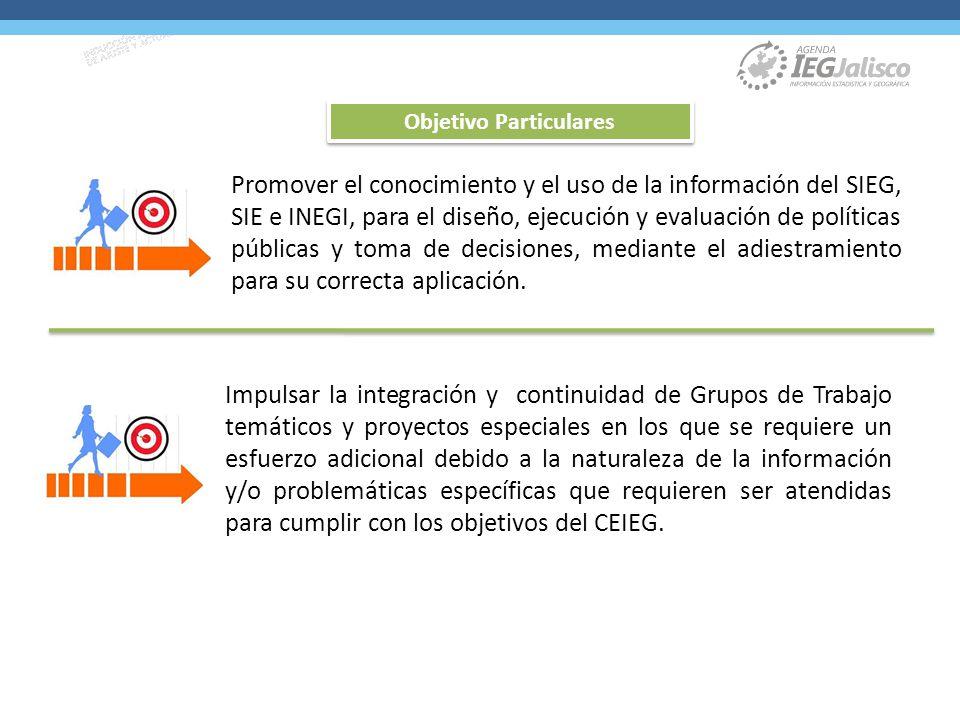 Promover el conocimiento y el uso de la información del SIEG, SIE e INEGI, para el diseño, ejecución y evaluación de políticas públicas y toma de decisiones, mediante el adiestramiento para su correcta aplicación.