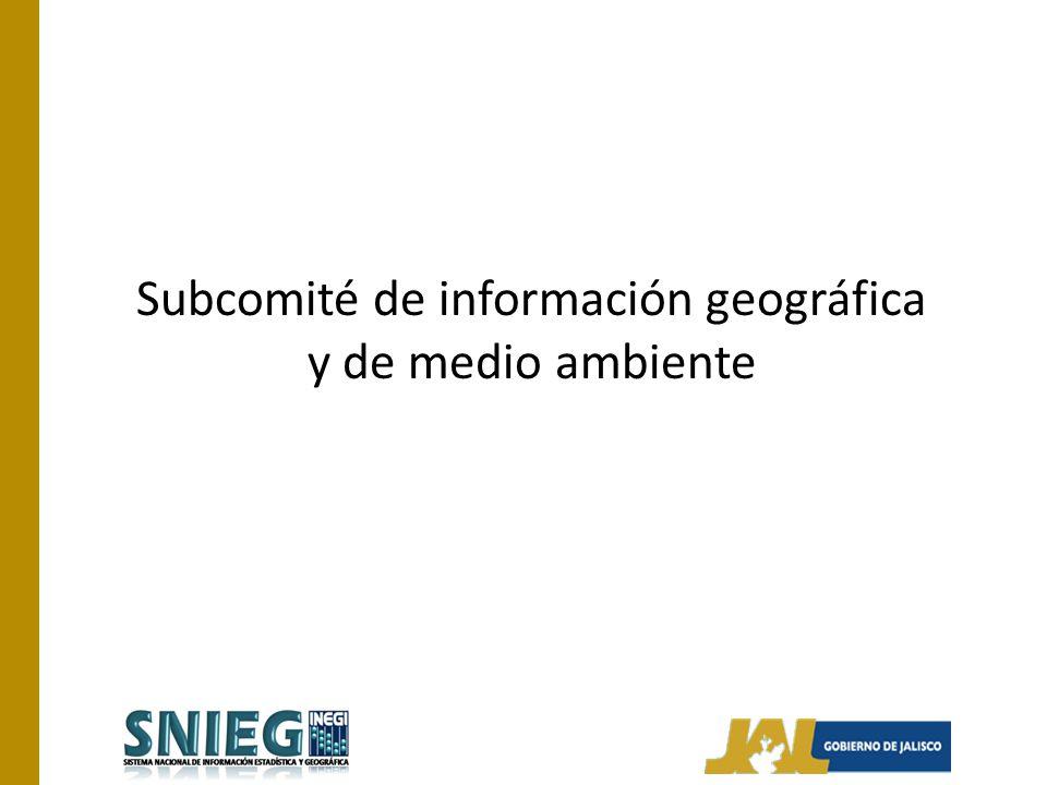 Subcomité de información geográfica y de medio ambiente