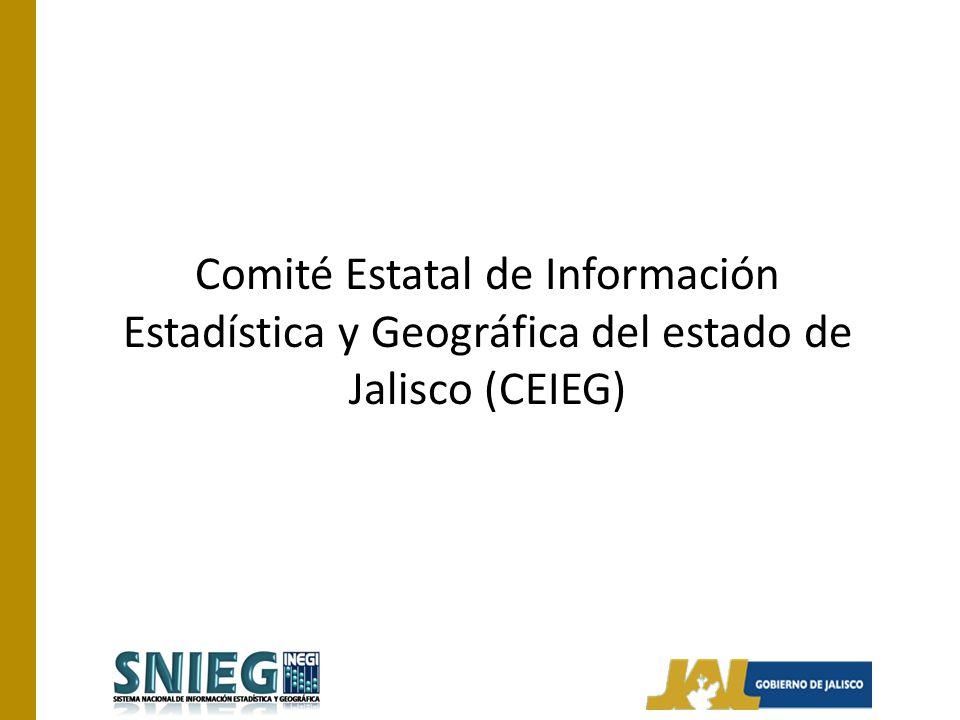 Antecedentes El papel del INEGI en este Comité es el de proporcionar la asistencia técnica, información y capacitación necesarias para su operación.