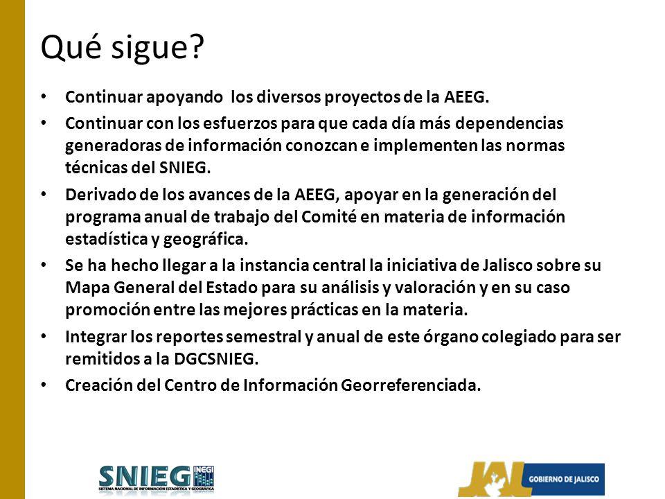 Qué sigue. Continuar apoyando los diversos proyectos de la AEEG.