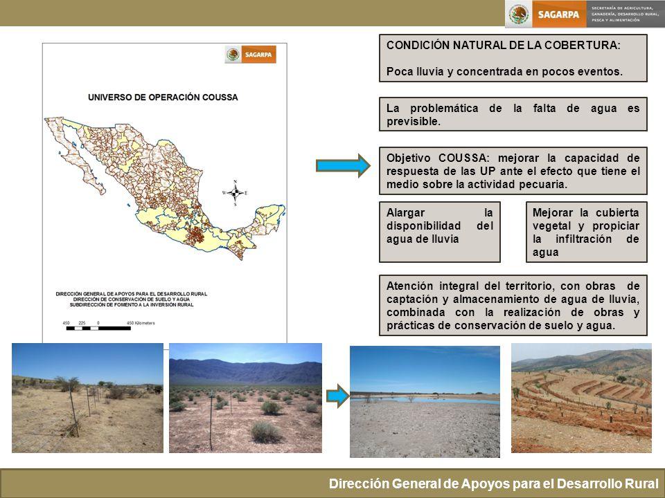 CONDICIÓN NATURAL DE LA COBERTURA: Poca lluvia y concentrada en pocos eventos. Dirección General de Apoyos para el Desarrollo Rural La problemática de