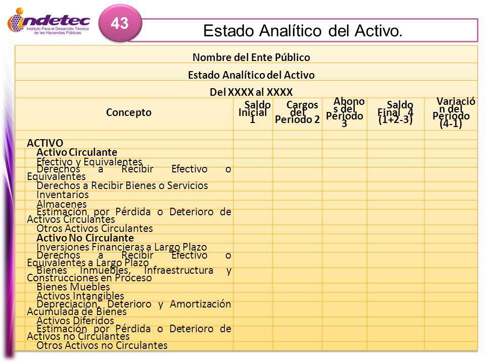 Estado Analítico del Activo. 43
