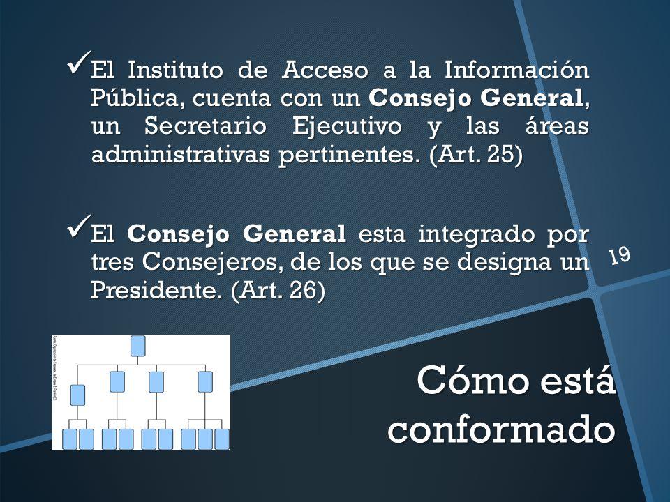 Cómo está conformado El Instituto de Acceso a la Información Pública, cuenta con un Consejo General, un Secretario Ejecutivo y las áreas administrativas pertinentes.