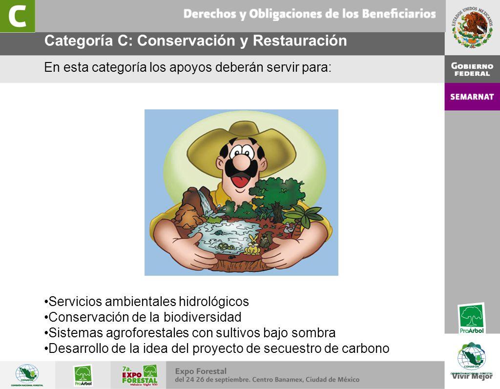 Categoría C: Conservación y Restauración En esta categoría los apoyos deberán servir para: Servicios ambientales hidrológicos Conservación de la biodi