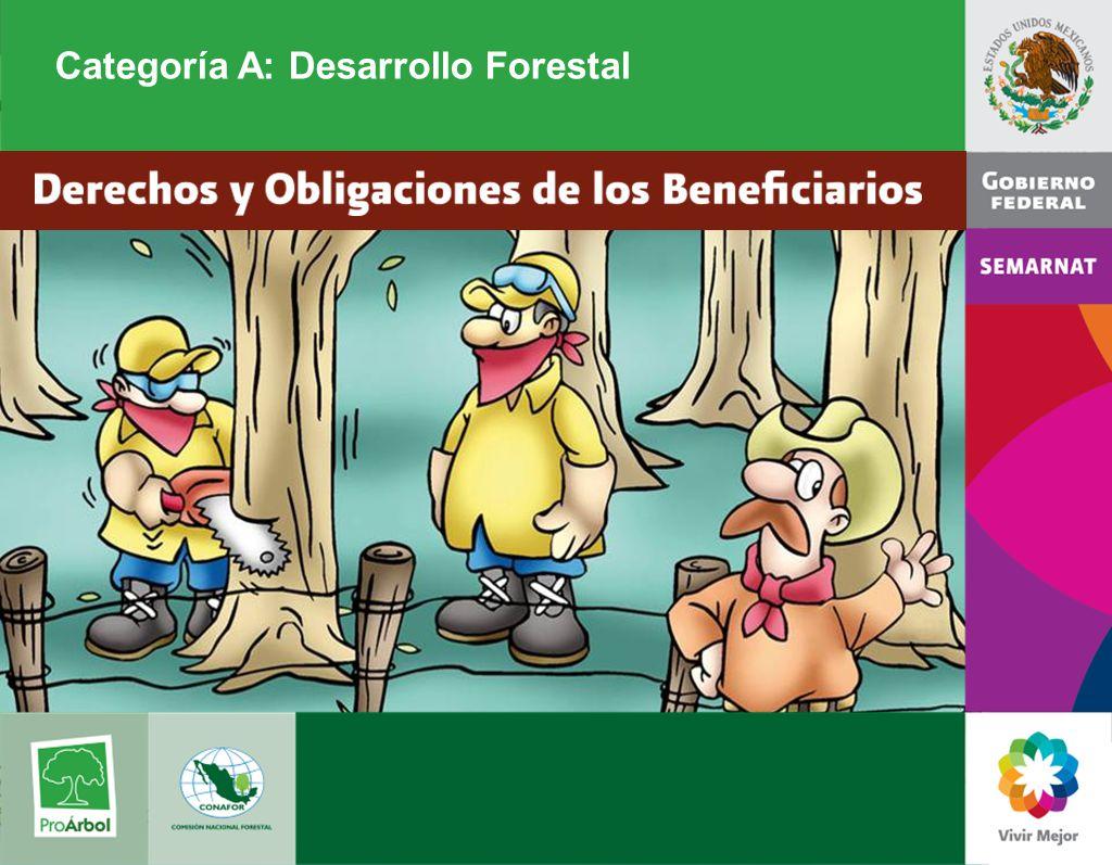 Estos apoyos están destinados a: A1 Estudios para el Aprovechamiento Maderable, no Maderable y de Vida Silvestre A2 Planeación Comunitaria A3 Cultivo Forestal A5 Dendroenergía